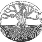 webs_logo